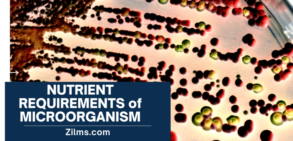NUTRIENT REQUIREMENTS FOR MICROORGANISM